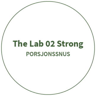 The Lab 02 Strong